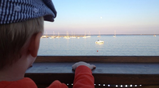 dog friendly restaurants in cape cod offer quite the view in provincetown.
