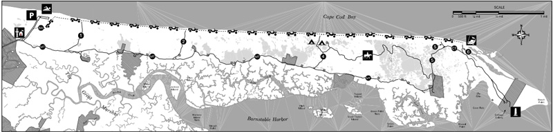 map of the trails at sandy neck beach in barnstable