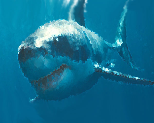 How to avoid a great white shark attack on cape cod