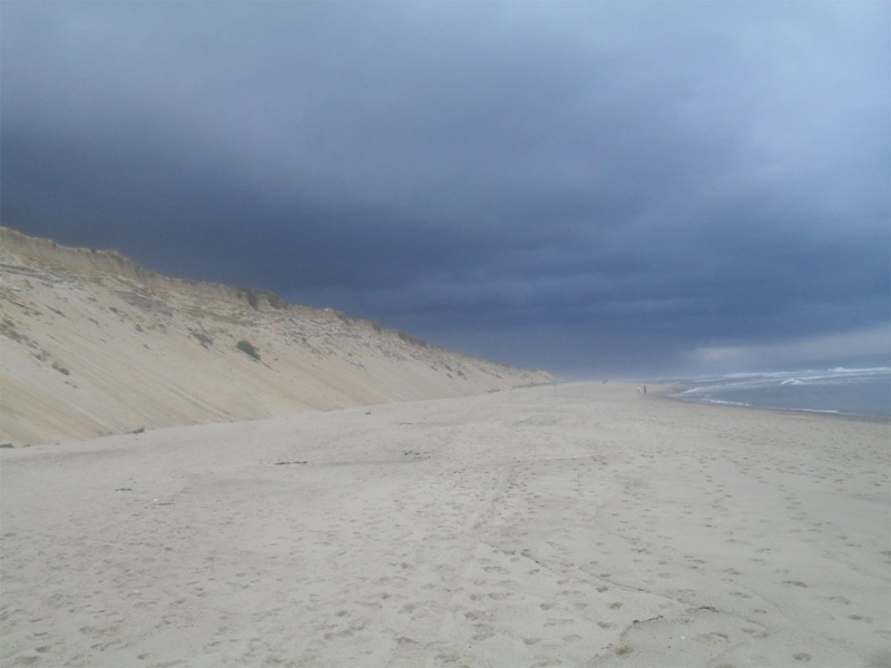 A storm quickly approaching the towering sand dunes of Marconi Beach. Marconi is dog friendly all summer long.