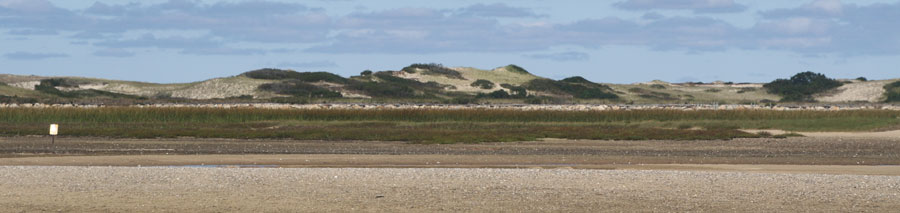 a distant sand dune backrops against race point beach