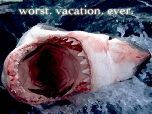 great white shark attack on cape cod