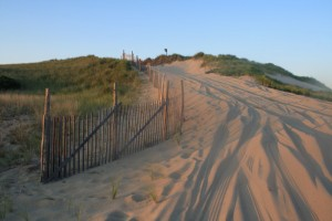 Oversand driving trail on race point beach, cape cod national seashore