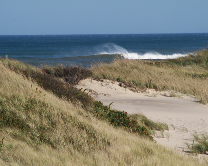 winds whip up spray at head of the meadow beach on dog-friendly cape cod national seashore