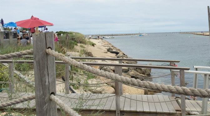 At low tide you can walk along the beach beyond the dog-friendly dining area at the Sesuit Harbor Cafe.
