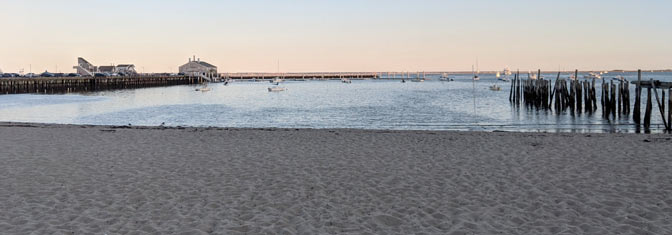 The beaches off of Commercial Street in Provincetown are the only beaches that allow dogs off-leash during the summertime.