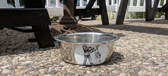 dog-friendly restaurants in eastham