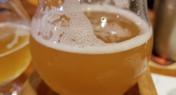 Most of the breweries on Cape Cod allow dogs in outside areas where beer is consumed, but usually local rules prohibit pets from areas where food is being prepared.