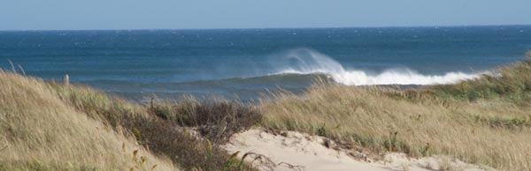 Wind whips spray from a wave beyond the dune of Head of the Meadow Beach.