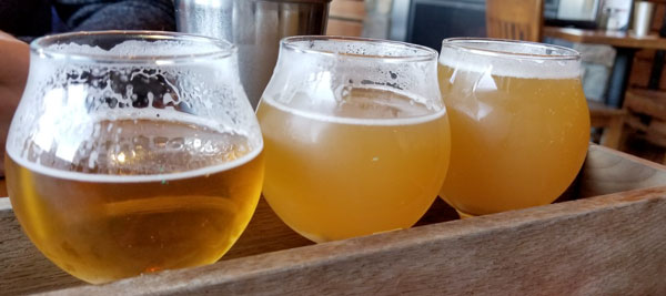 Most of the breweries on Cape Cod that allow dogs have outdoor seating that is pet-friendly so you can enjoy a flight of beers while your dog joins you.