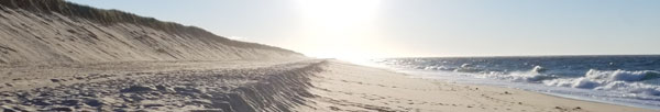 Race point beach's orv trails provide access to long open stretches of beach, perfect for a peaceful sunset.