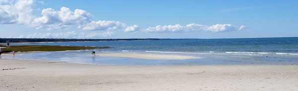 The best beach for kids on Cape Cod is Skaket Beach. Located on the Cape Cod Bay, the warm, gentle waters and soft white sand is perfect for little feet to explore..