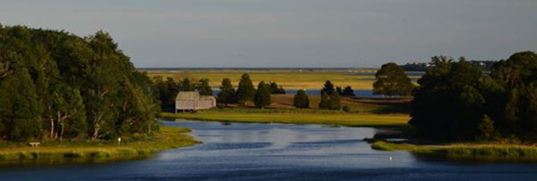 The view of Salt Pond, Nauset Marsh, and the Atlantic Ocean as seen from the terrace at Salt Pond Visitor Center in Eastham. Photo source: nps.gov