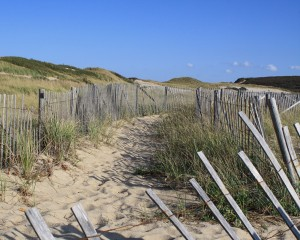 beach-fence-north-truro