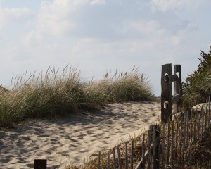 beach-path-head-of-meadow